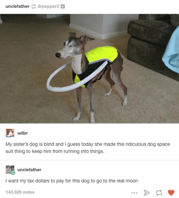 Astrodog: