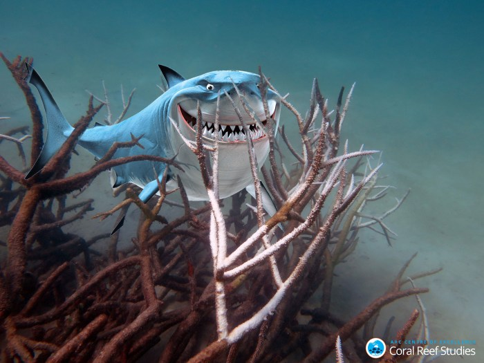Here's Bruce the shark, trying and failing to hide behind some coral because his home has been destroyed by the ravages of climate change.