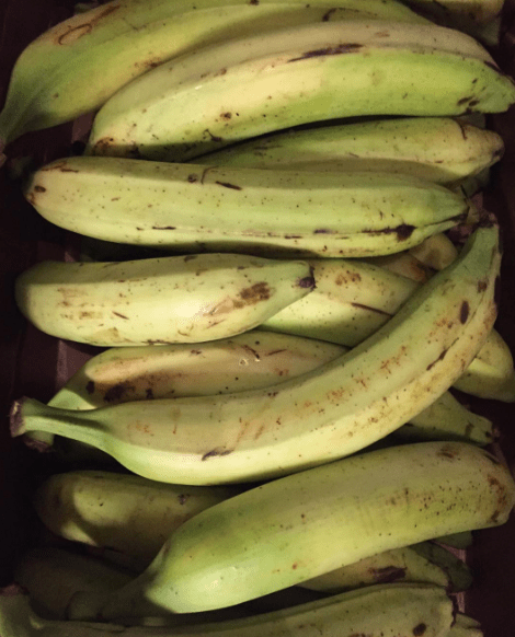 These plaintains that you have to peel back to get to the sweet stuff: