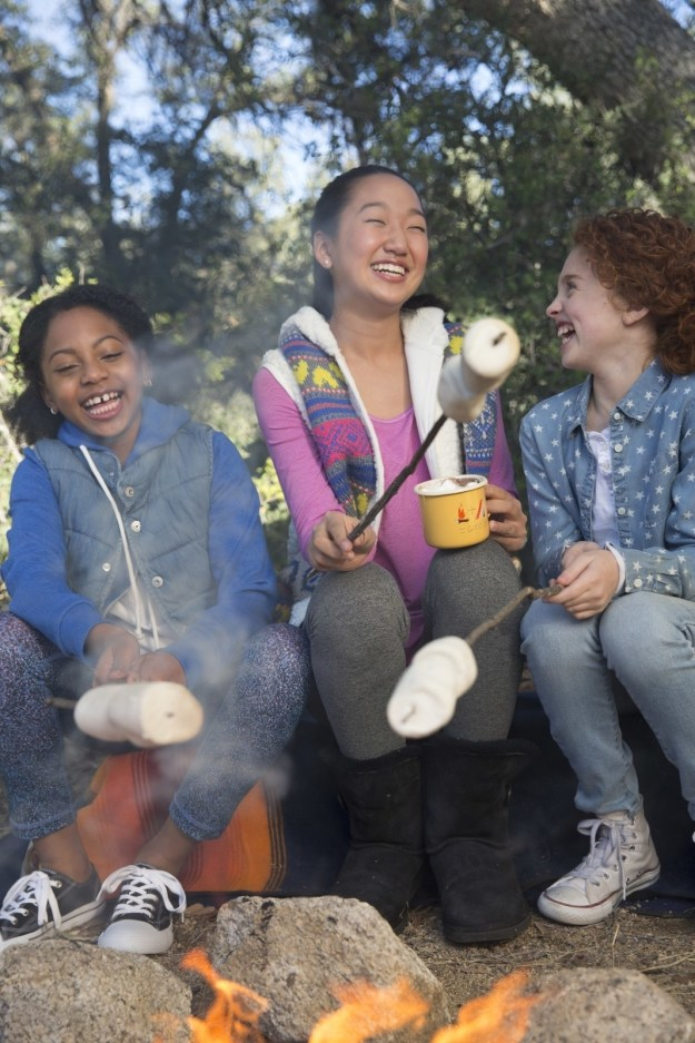 Well, wonder no more, my friend! Because on this day, aka National S'mores Day, the Girl Scouts of the USA announced they'll be adding TWO commemorative Girl Scout S'mores cookies for the 2017 cookie season!