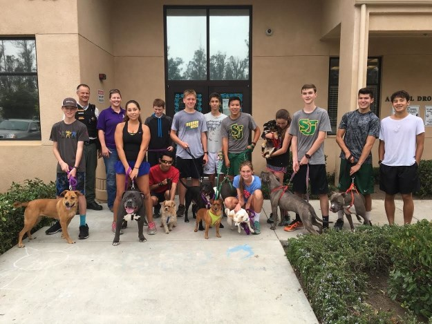A high school cross country team in California has found a way to give back while training by inviting shelter dogs to run with them during practice.