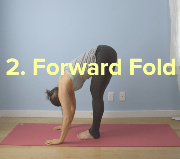 Then, exhale and bring your palms towards the floor for forward fold.