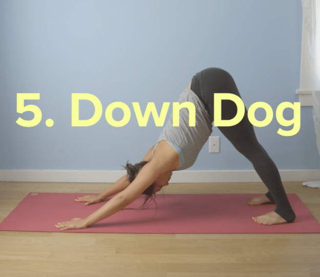 Next, bring your hips towards the sky and move into downward dog pose.