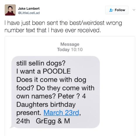 This person who got a text about selling poodles: