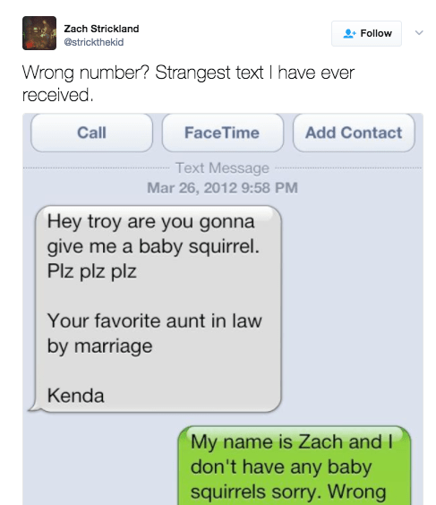 This person who got a text from someone who is really into squirrels: