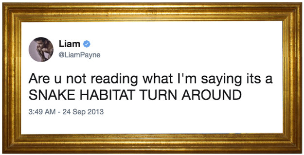 That time Liam warned fans not to linger because there might be snakes around: