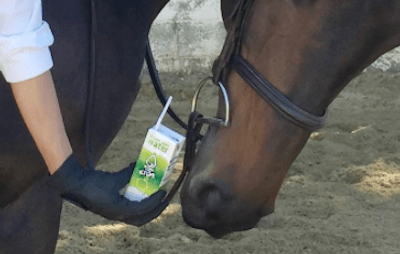 Look, I'm sure the water is just fine for horses. Horses love water (so I've heard)...but, CAN HER HORSE DRINK OUT OF A STRAW????????