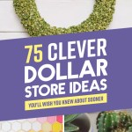 75 Clever Dollar Store Ideas That Will Have You Saying How D They Think Of That