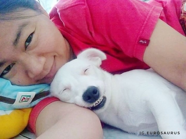 飼い主のスミートラ・ジャウィパットさんは、BuzzFeed Newsに「ユーロはわんぱくで陽気な犬」だと話します。