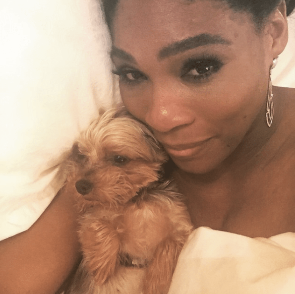 Serena Williams & Chip: