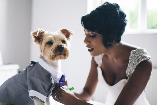"""""""Alfie is a huge part of our lives and there was never a decision made to have him as our ring bearer. He was the only choice. He's such a great part of our relationship and we wanted to have him involved in our family's big day,"""" Atcheson told BuzzFeed."""
