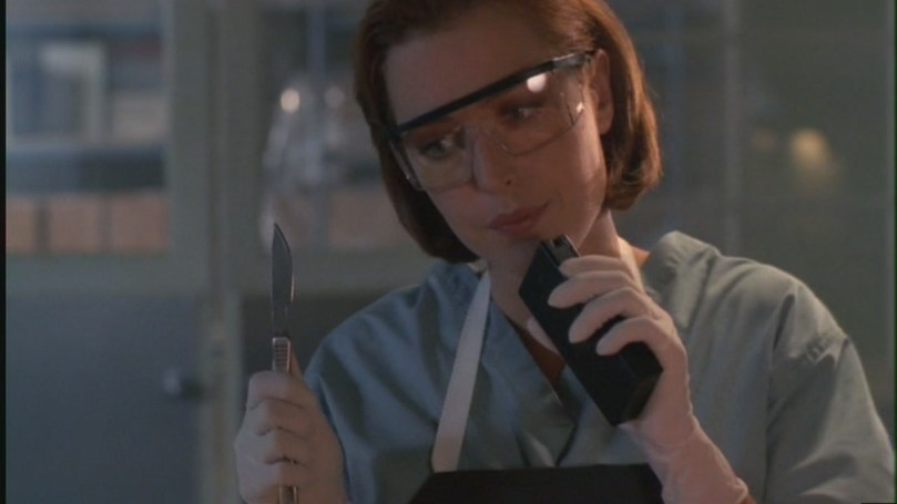 """Os agentes Mulder e Scully, do clássico sci-fi """"Arquivo X"""", enfrentavam tudo unidos e em total pé de igualdade. Além de tudo ela era uma brilhante cientista e em mais de uma ocasião era ela quem salvava o idealista Mulder."""