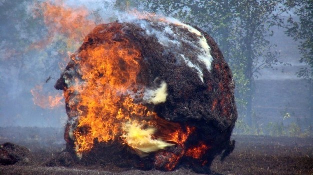 Bales of hay can spontaneously combust due to moisture.