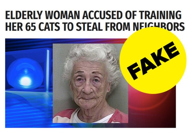 A fake news chronicle approximately an 83-year weak woman who got arrested for training her cats to steal from the neighbors has gone viral.
