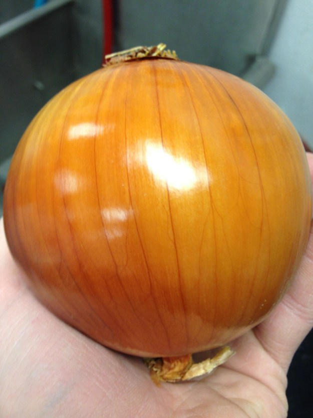 This blindingly beautiful onion:
