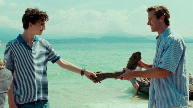 Maybe you saw a bunch of movies this year, and adored Elio and Oliver's love story in Call Me by Your Name.
