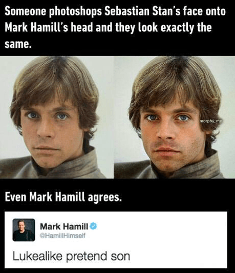 So, in case you're new here, the internet is convinced Sebastian Stan (aka Bucky Barnes of Captain America) and Mark Hamill (aka Luke Skywalker of Star Wars) are related.
