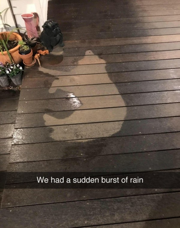 Clues of rain:
