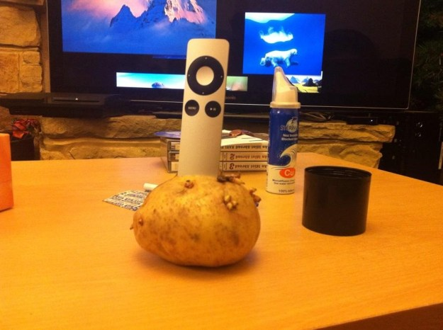 A particularly old potato: