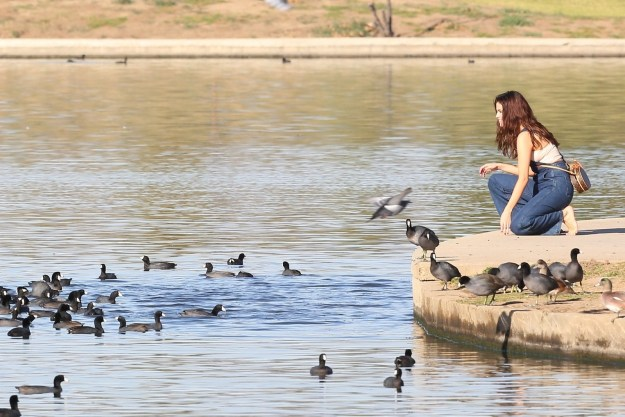 Selena Gomez was spotted last Friday looking rather seducktive at a local Los Angeles pond.