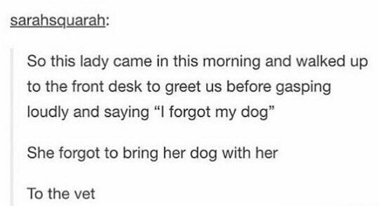 This dog owner: