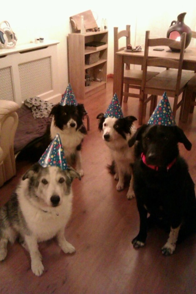 Look at these silly boyes who don't know what to do with their party hats!!!