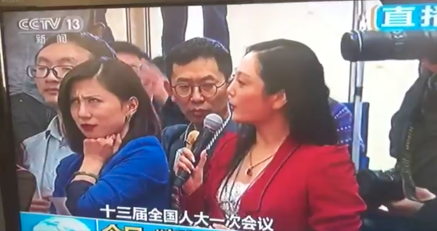Basically here's what happened. During China's annual parliamentary session, Zhang Huijun, the woman in red, asked a fawning, long-winded question to a government official. Liang Xiangyi, a reporter for Shanghai-based Yicai.com, wasn't having any of it.