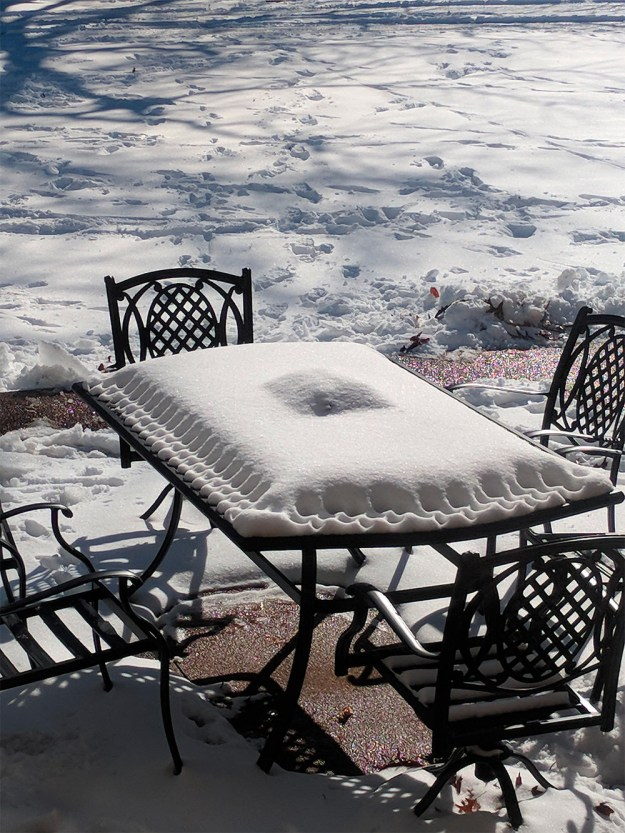 This table snow that looks like a fruit-filled pastry.