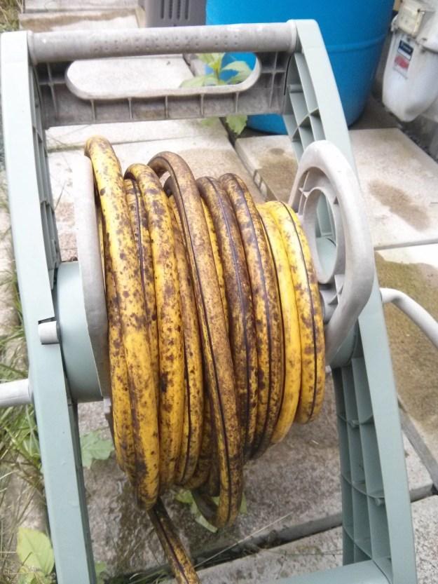This water hose that'll make you want a banana real bad.