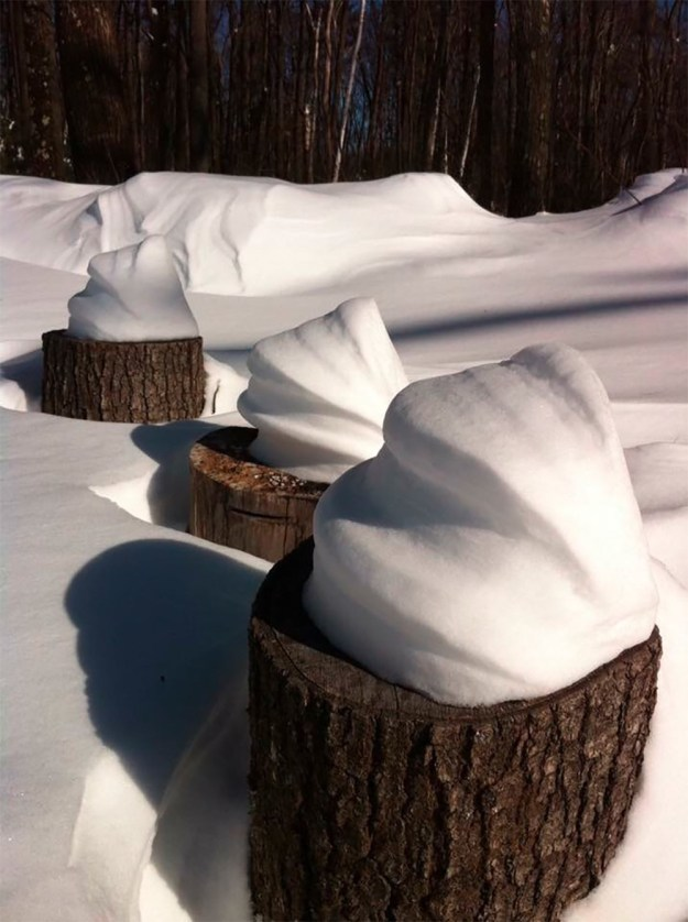 And finally, these swirls of snow on top of logs that look like soft serve ice cream.