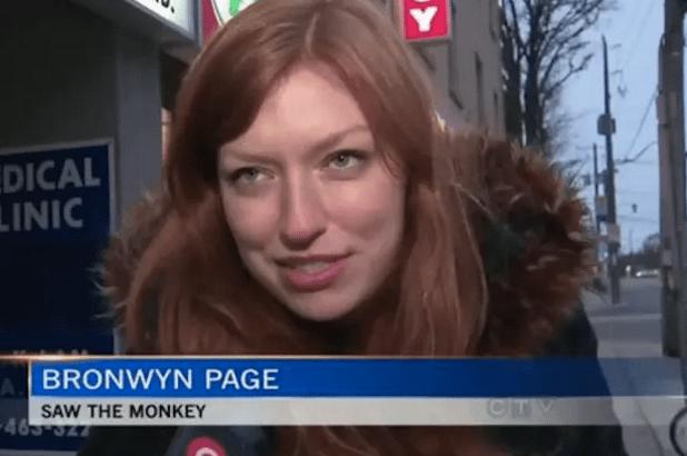 A woman who saw THE monkey: