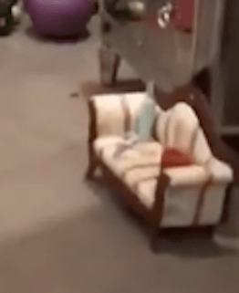 Ah ha! Yes. A tiny baby couch.