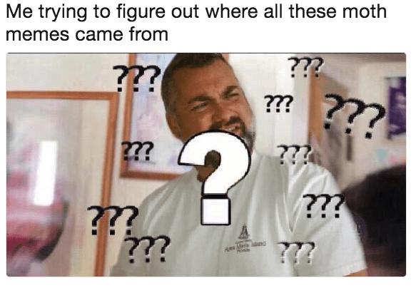 25 Best Memes About Keto Diet Meme Keto Diet Memes