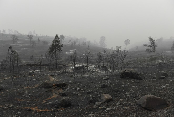 The scene of destruction after the Camp fire on Nov. 15, near Paradise.