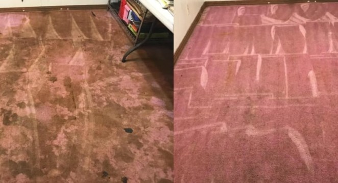 """This stuff both cleans AND deodorizes carpets. It can be used in pretty much all machines — Hoover, Bissell, Rug Doctor, Kenmore, Carpet Express. The solution works on all water-safe surfaces like carpets, rugs, furniture, and automobiles. Plus, it's biodegradable and non-toxic.Promising review: """"This works like a dream. I have light beige carpets, and this gets all the dirt and stains right out."""" —Karen M.Get it from Amazon for $19.97."""