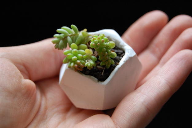 Miniature Clay Pot