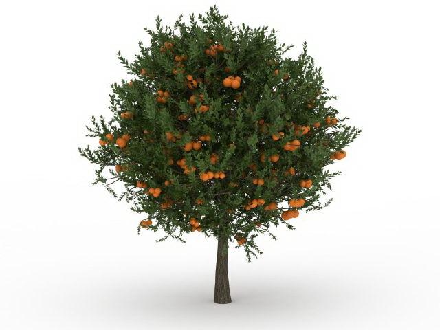 Fruit Tree 3d Model 3ds Max Files Free Download Modeling 29608 On CadNav