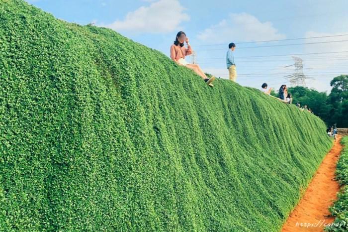 """""""台中綠色瀑布""""地主已張貼「私人土地,請勿入園內」,建議不要再前往造成困擾!"""