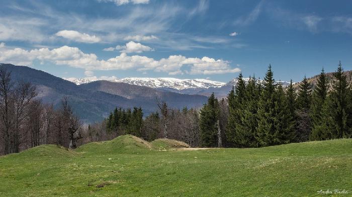 /Tataru/image011.jpg