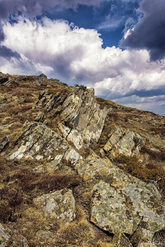 /Tataru/image015.jpg