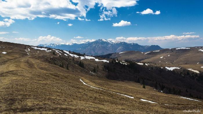 /Tataru/image019.jpg