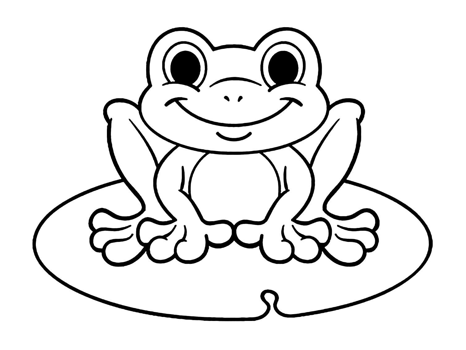 Amphibia Frog Colouring Image