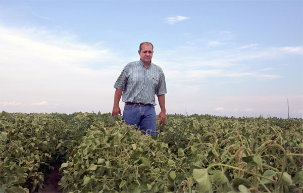 U.S., weed killer crisis, crop damage, investigation