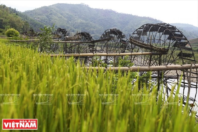 Water wheel – feature of mountainous hamlet, social news, vietnamnet bridge, english news, Vietnam news, news Vietnam, vietnamnet news, Vietnam net news, Vietnam latest news, vn news, Vietnam breaking news