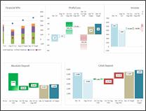 KPI Dashboard by Riekie Cloete - snapshot 1