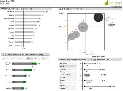 Dashboard to visualize Excel Salaries - by Joerg Decker - Chandoo.org - Screenshot