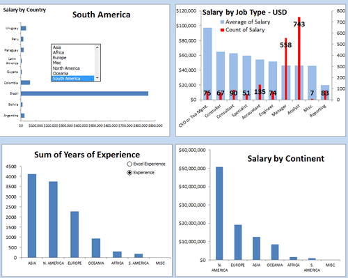 Dashboard to visualize Excel Salaries - by Susan Christine McManus - Chandoo.org - Screenshot
