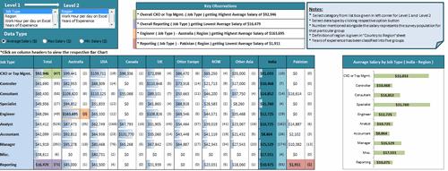 Dashboard to visualize Excel Salaries - by Nitin Bindal - Chandoo.org - Screenshot