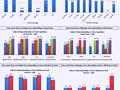 Dashboard to visualize Excel Salaries - by Aldo Mencaraglia - Chandoo.org - Screenshot #02
