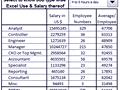 Dashboard to visualize Excel Salaries - by rajendrajo@gmail.com.xlsm - Chandoo.org - Screenshot #02